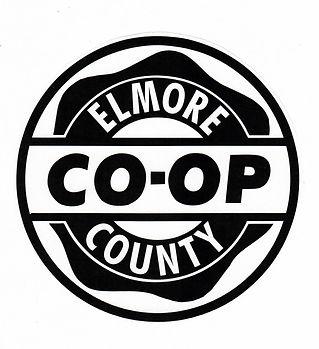 Elmore Logo (1)_edited.jpg