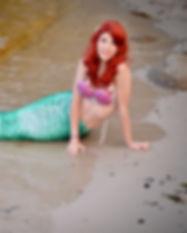 Ariel Beach.jpg
