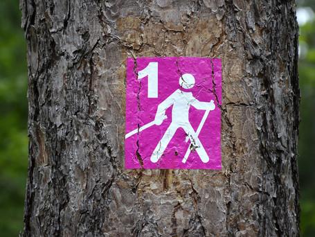 Caminhada Nórdica: muitos motivos para você praticar