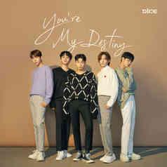 D1CE - You're my destiny