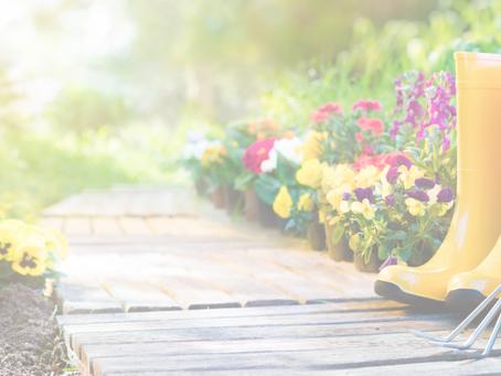 Nurturing the Garden of Your Life