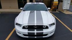 Mustang Stripes 3