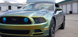 Cincy Vinyl Wraps Fresh Spring Mustang (