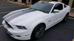 Mustang Stripes
