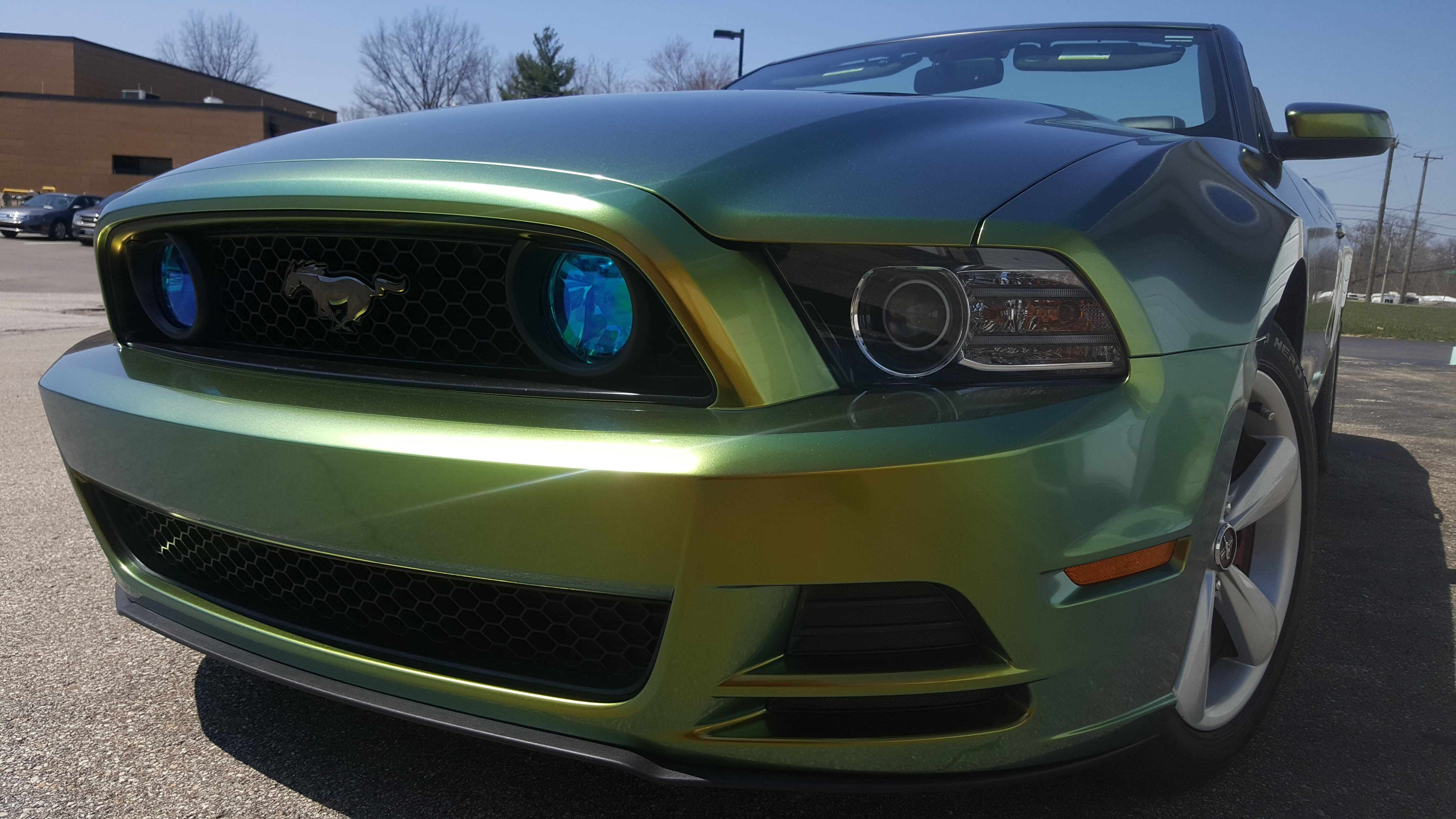 Cincy Vinyl Wraps Fresh Spring Mustang (