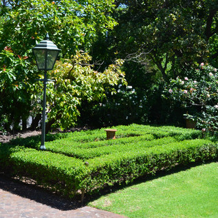 Front garden .JPG