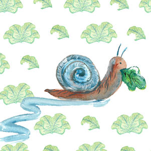 Snail with background.jpg