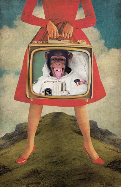 monkey_see_monkey_do.jpg