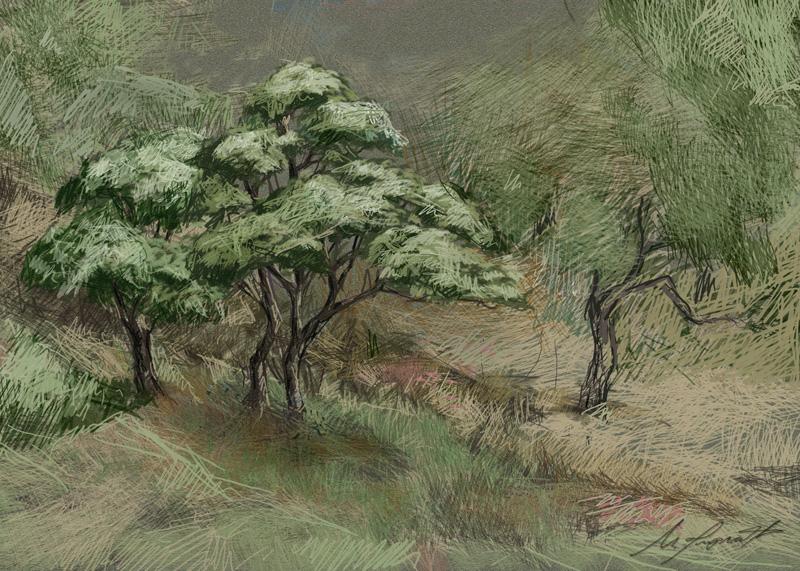 bonsai peygin50x70.jpg