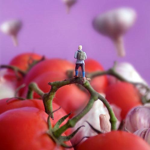Pomodoro Land