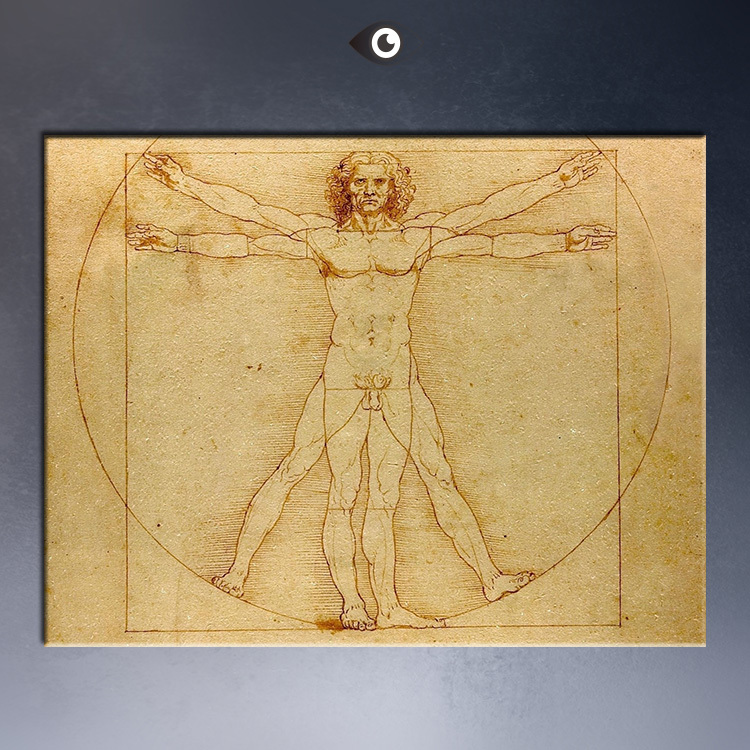 Proportions-of-the-Human-Figure50x70.jpg