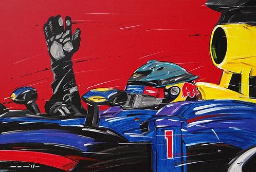 F1 Vettel Red Bull Race