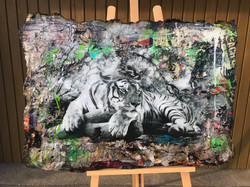 White Bengal Tiger
