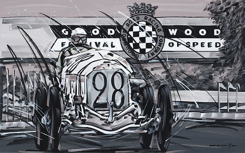 Mercedes French Grand Prix 28 1914