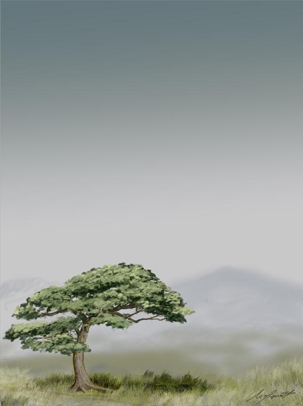 bonsai_solitario50x67.jpg