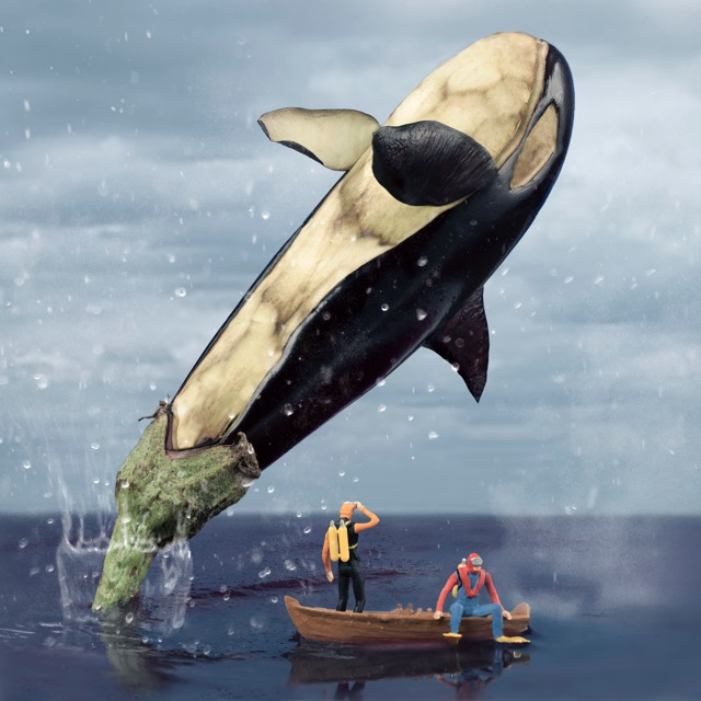 The Eggplant Orca Whale 90x90cm