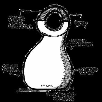 200221 Swan Diagram.png