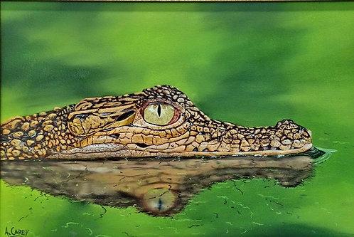 Crocodile (study), by Anthony Carey