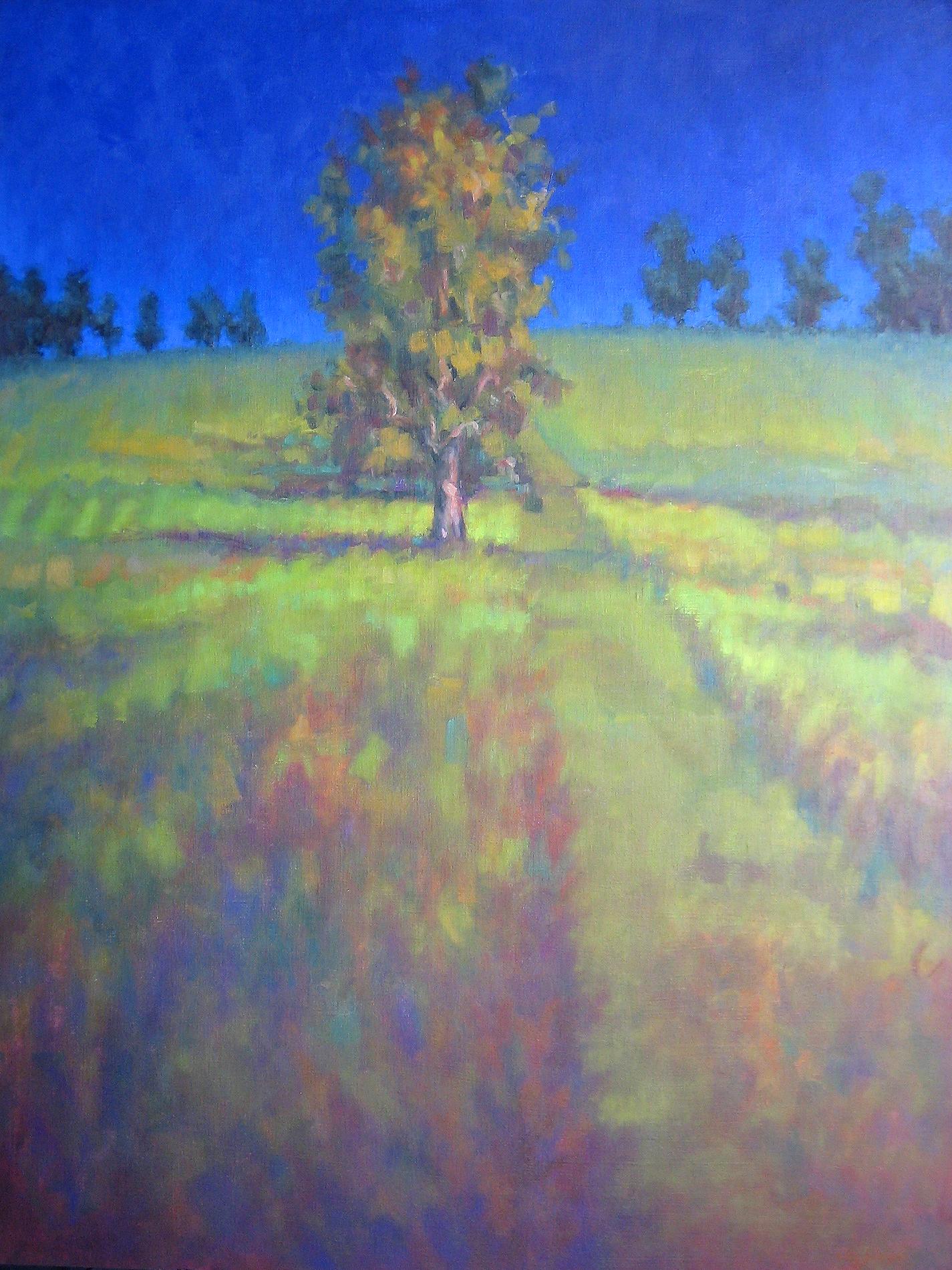 Sunlit Tree