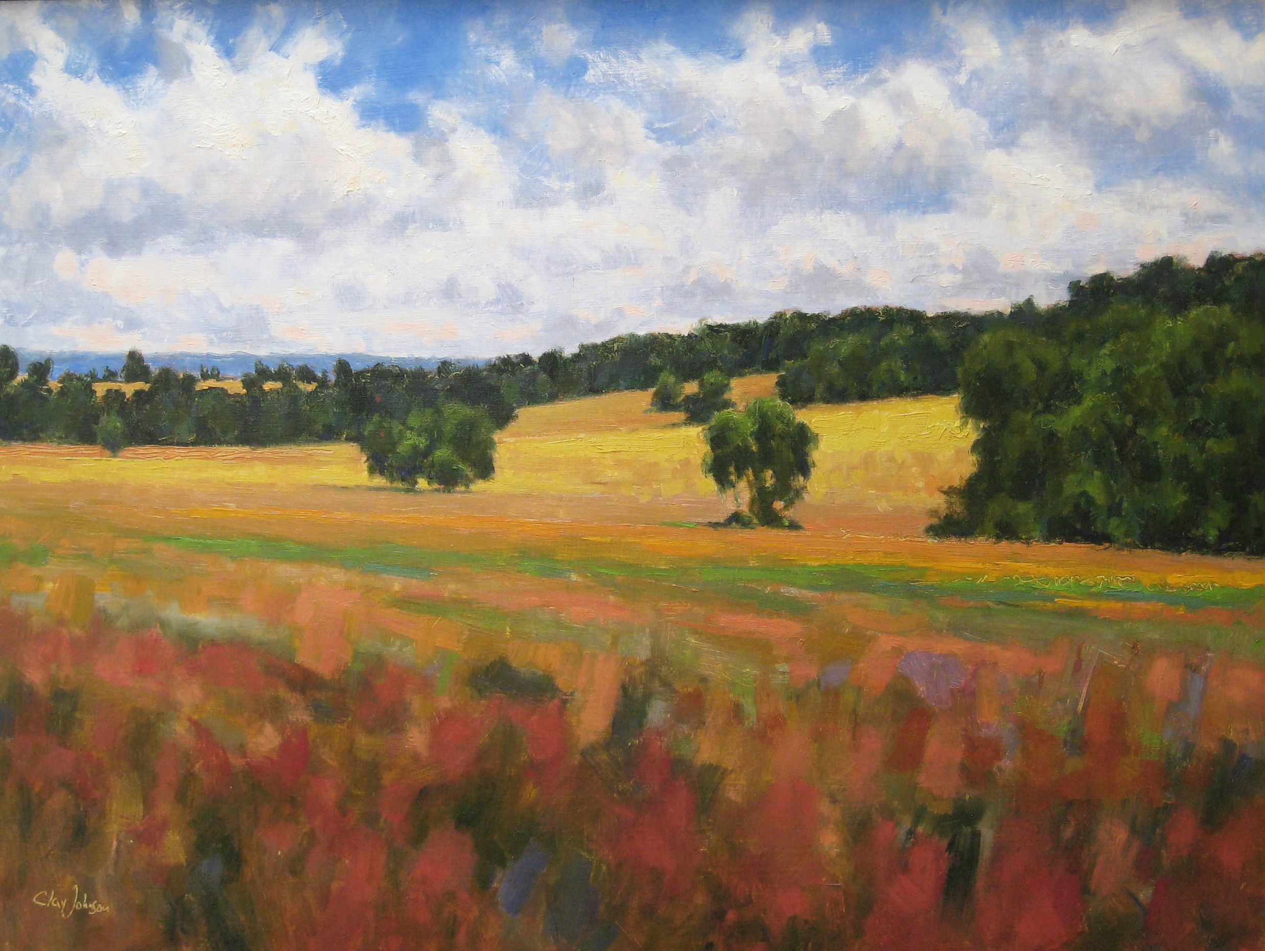 295- Yellow Field 18x24