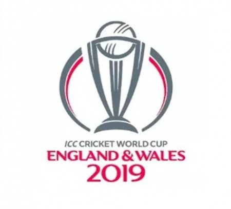 Cricket World Cup Game