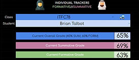 individual report.JPG