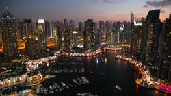 Lesson 5 - Case Study - United Arab Emirates