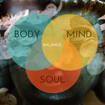 Reset your mind, body & soul in 20 days