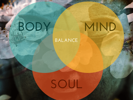 Mind, Body, Soul. The holistic wellness approach.