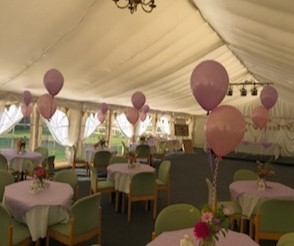 Pink Marquee Party