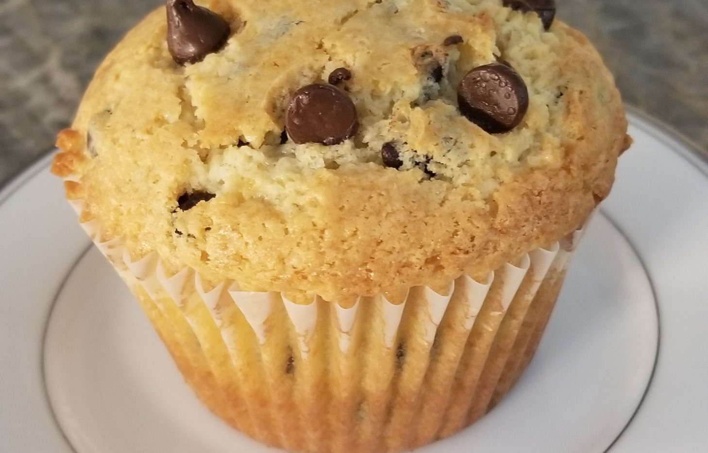 Chocolate Chip Muffin_edited.jpg