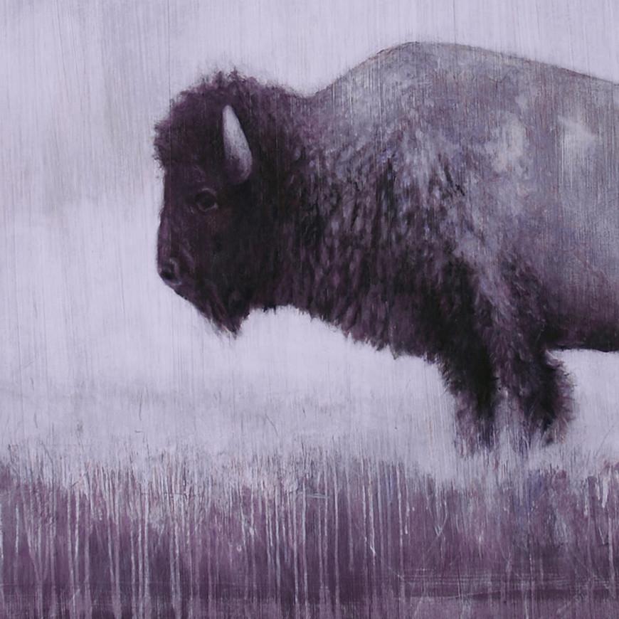 Buffalo Detail