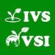 IVS & VSI