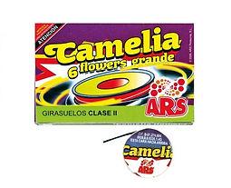 Camelia Girasuelo