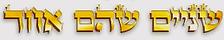 logo_shnaim.png