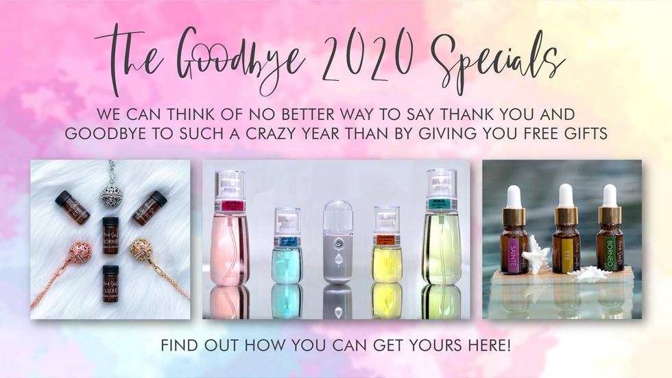 Goodbye 2020 Specials