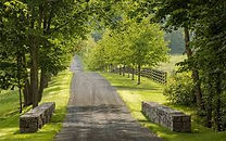 Driveway Image.jpg