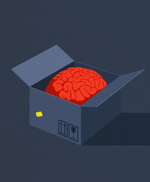 Order a brain