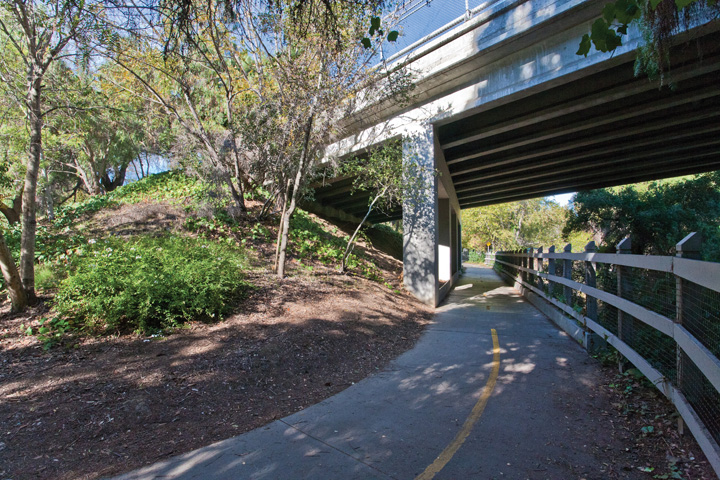 Steven Creek Walking Path