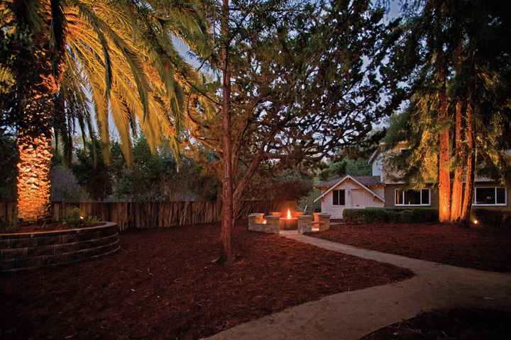 Evening Firepit & Trees