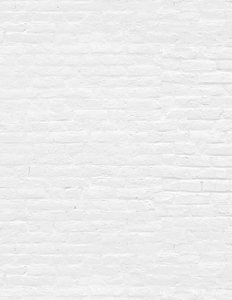 WHITEBRICK.jpg