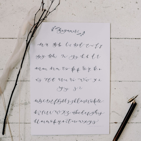 Beginners calligraphy nib + ink workshop