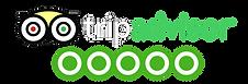 tripadvisor-logo-leisure-italy-private-e