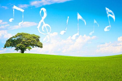 Summer_Music.jpg