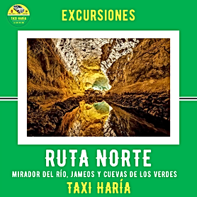 EXCURSIONES RUTA NORTE-WEB.png