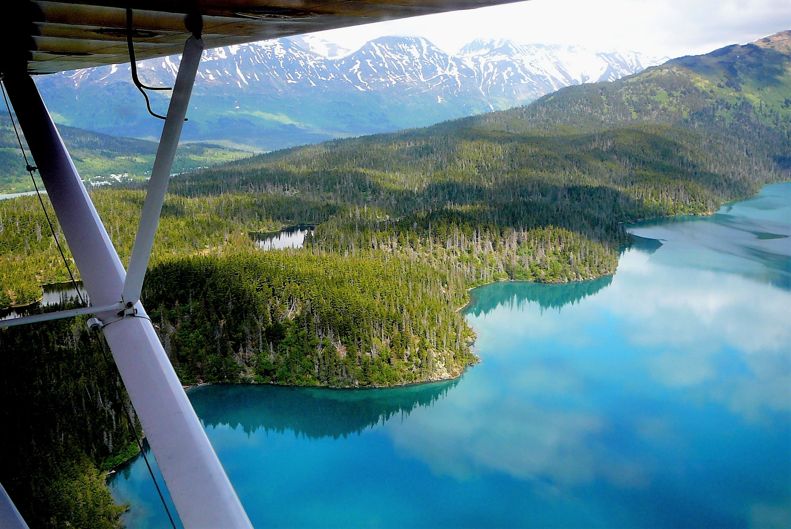 Floatplane Safari Adventure
