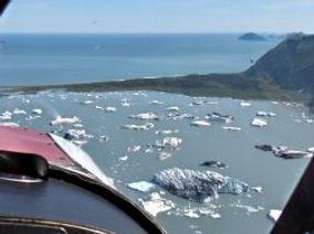Icebergs from Bear Glacier