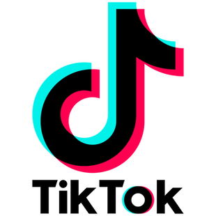TIKTOK: Why Is It So Musically Influential?