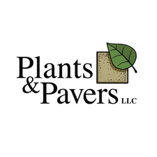 Plants & Pavers