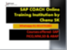 sap coach photo.PNG